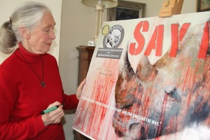 "Dr.Jane Goodall joins RAGES' ""SAY NO!"" campaign to promote animal conservation. Photo courtesy of RAGES."